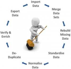 Data-Cleaning-Google-Images-Fennel-Aurora-jpg